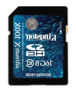 Kingston Digital 16 GB Class 10 Flash Memory Card SD10G2/16G